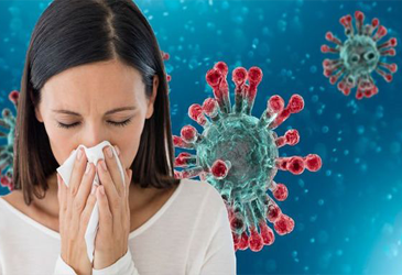Common Cold and Flu Guide